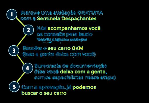 Projeto-PCD-removebg-preview